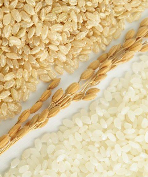 玄米と精米